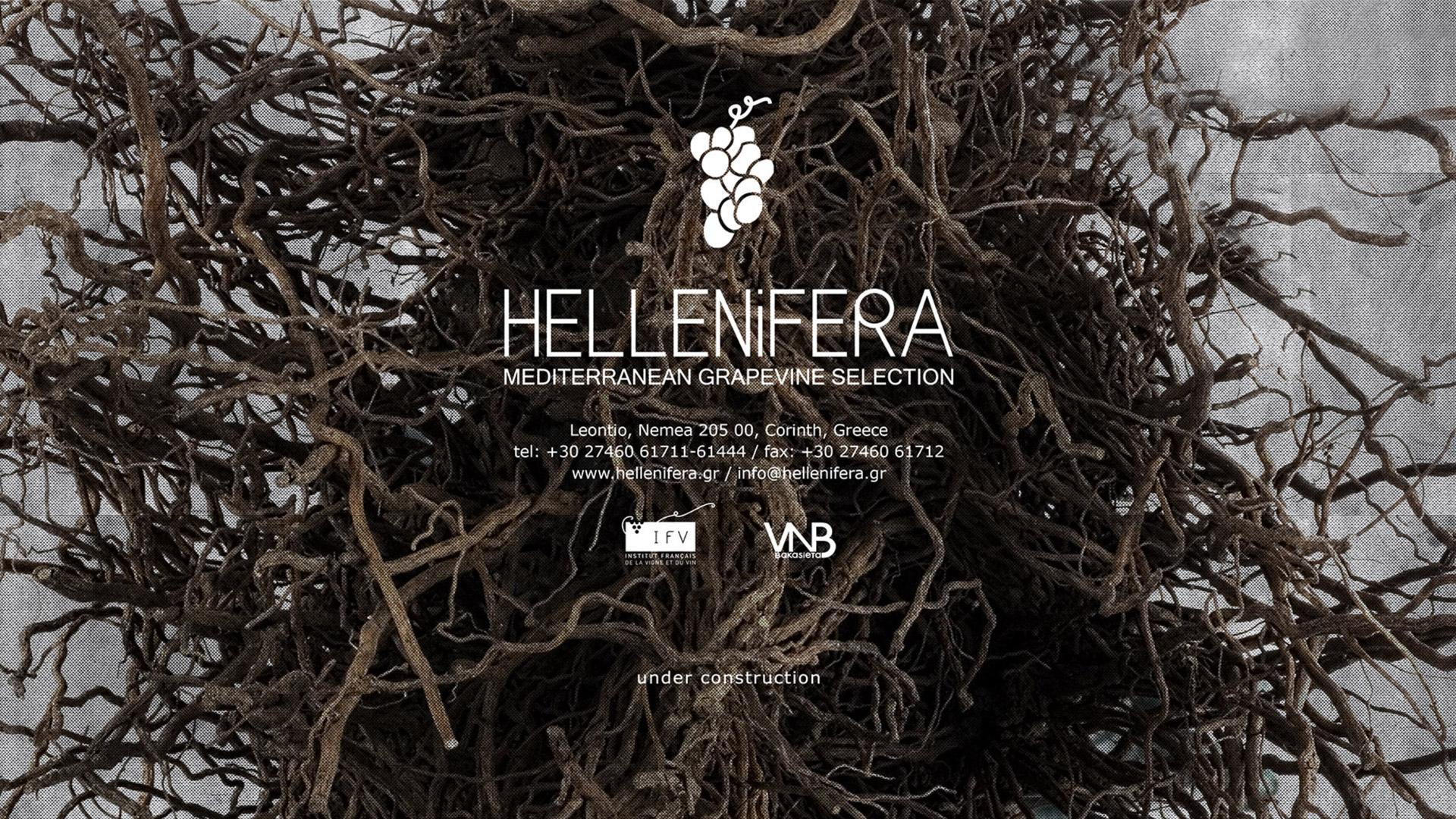 www.hellenifera.gr